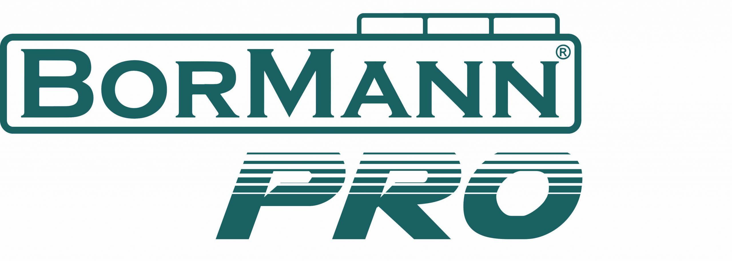 BORMANN pro logo scaled 1